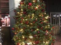 クリスマスツリー&イルミネーション2018-2019
